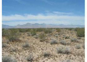 Winnemucca, NV Land For Sale