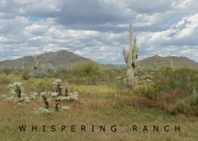 az acreage for sale
