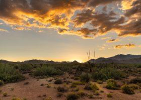 AZ Maricopa County