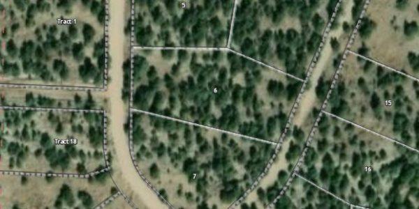 Alamosa CO GIS