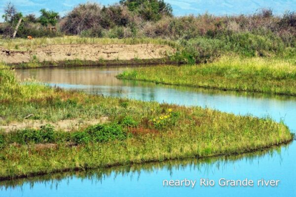 RG River 1